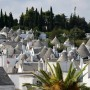 "Lonely Planet premia Alberobello: location ""emozionante"""